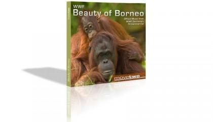 BeautyOfBorneo-888x500