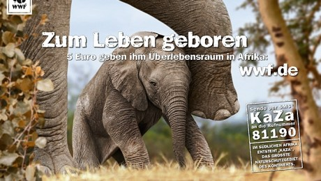 Zum Leben geboren